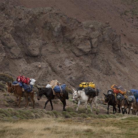 GRAJALES_aconcagua-expeditions4-BaseCampcc