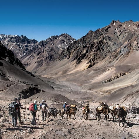 GRAJALES_aconcagua-non-guided2-expeditionsc