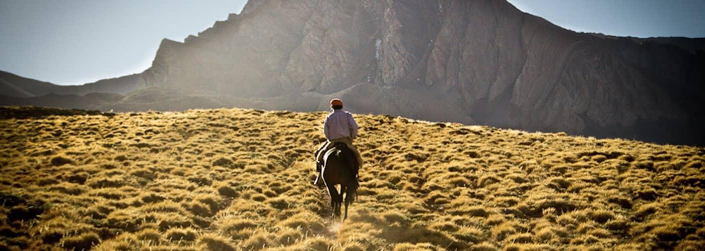 Andes Crossing - Paso Piuquenes